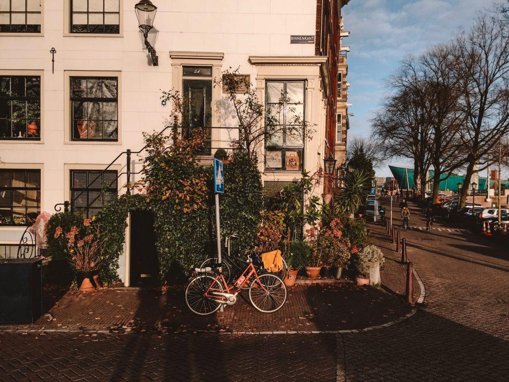 amsterdam guide like a local